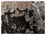 Petroglyphes : camélidés