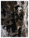 Peintures rupestres - Centaure