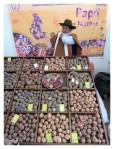 Septembre 2012 : Mistura, festival de la gastronomie péruvienne  Mistura festival de la gastronomia peruana