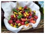 Septembre 2012 : Mistura, festival de la gastronomie péruvienne