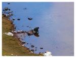 Juin 2013 : Trek du Pariacaca - Jacky à la laguna Escalera