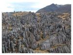 Aout 2013 : Exploration en cordillère Carabaya - la foret de pierres de Jaylluwa  Exploracion en la cordillera Carabaya - el bosque de piedra de Jaylluwa