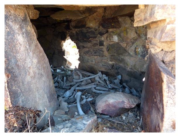 Rupac à probablement été occupé par une importante population et durant une longue période vu la quantitée d'enterrements